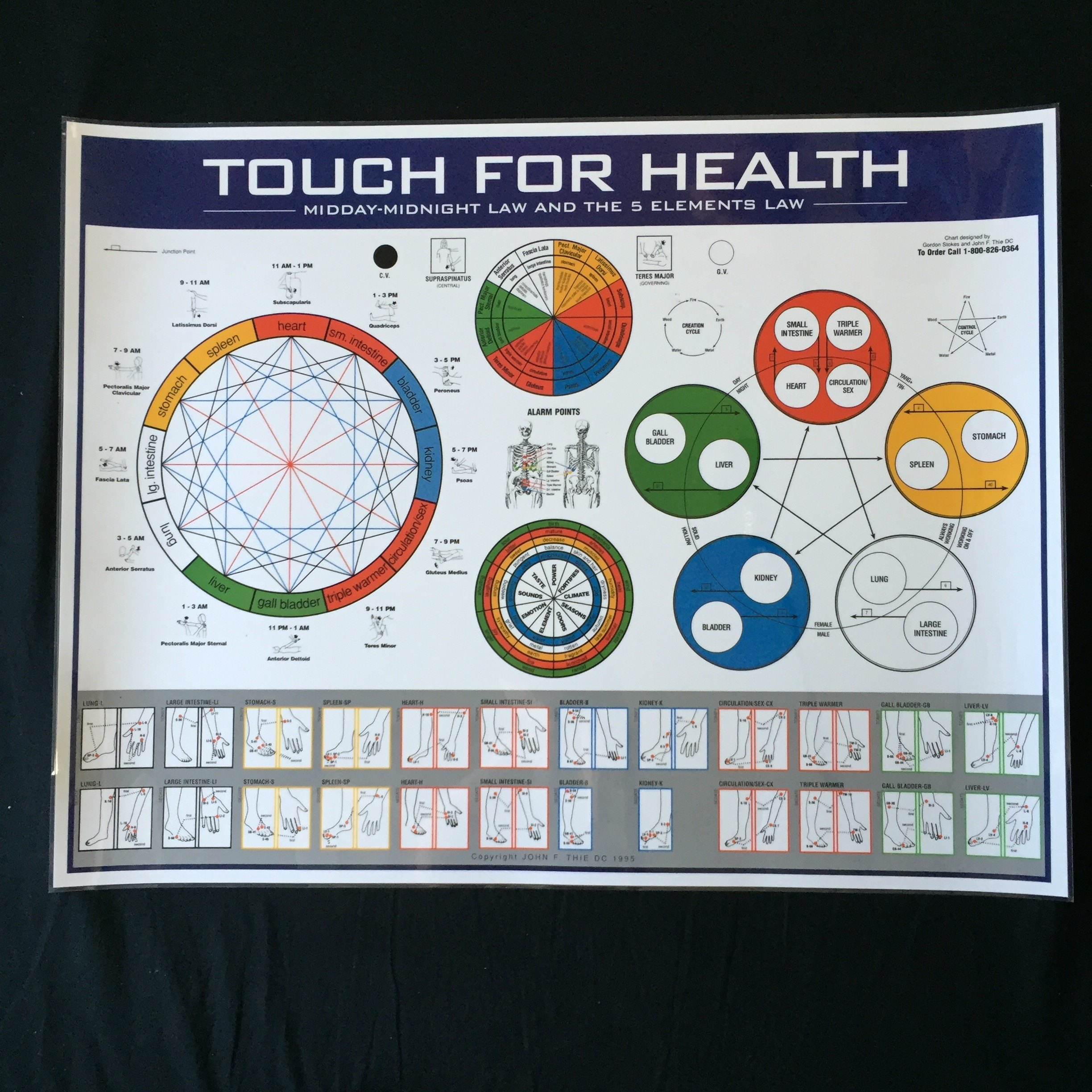 5 Element & Mid-Day Midnight Wall Chart